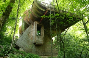 Audiophile Treehouse